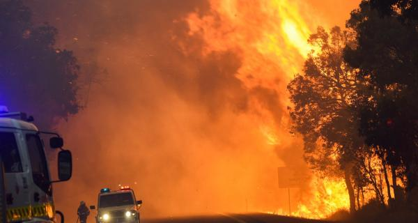 Waroona bushfire 2016. Photo DFES