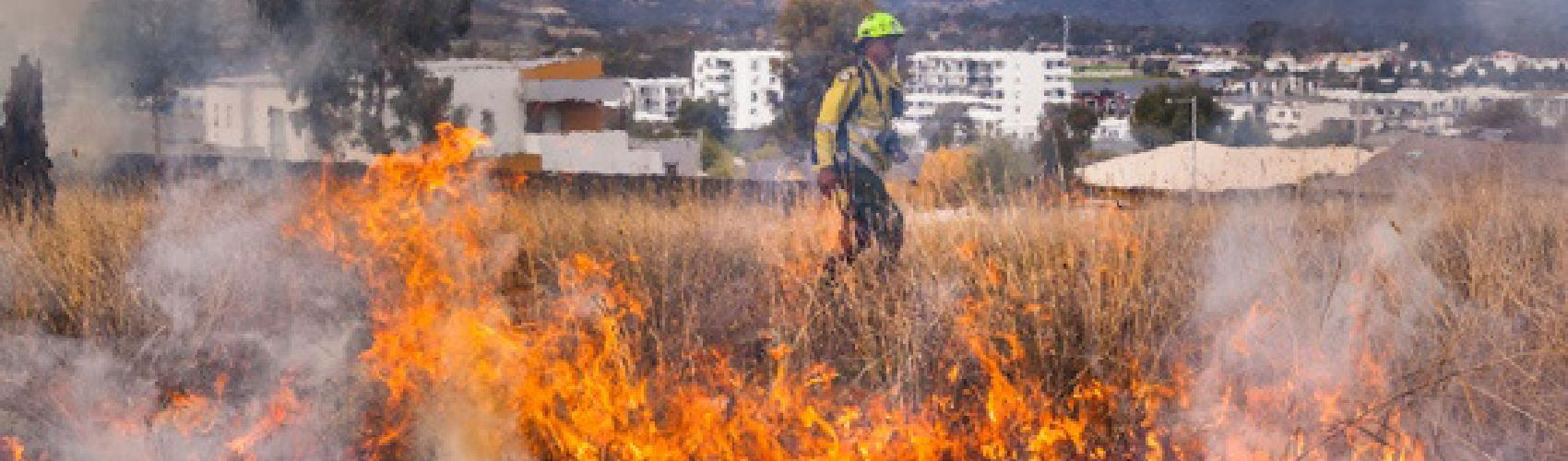 WIRADJURI MAN DEAN FREEMAN (ACT PARKS AND CONSERVATION SERVICE) AND A CULTURAL BURN IN NGUNNAWAL AND