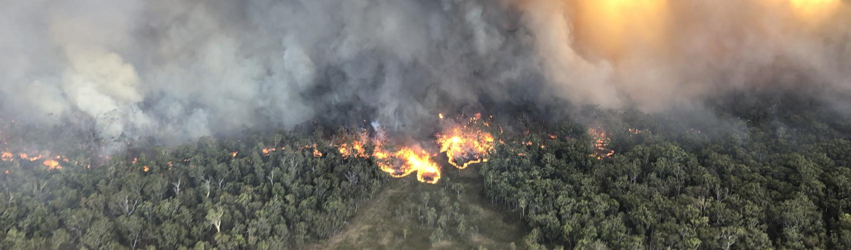 Photo: Queensland Fire and Emergency Services