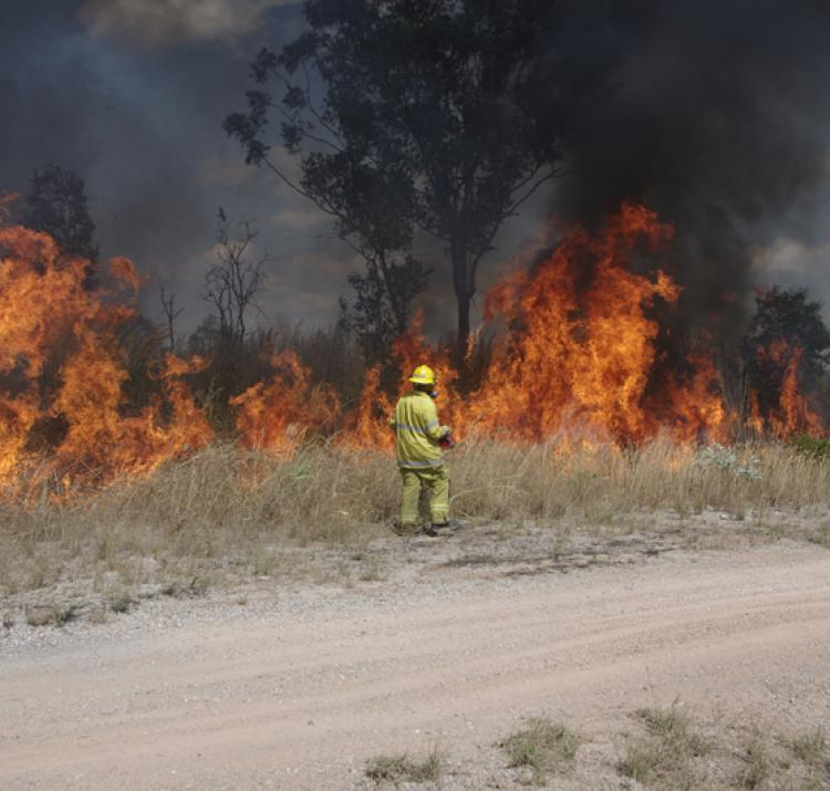 This research is helping fire and land managers assess greenhouse gas emissions and develop carbon abatement plans.