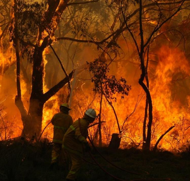 An out-of-control bushfire is one of the scariest situations a firefighter can face. Photo: CFS Promotions Unit.