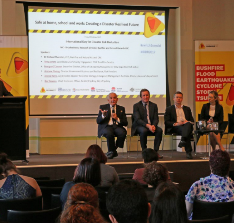 The International Day for Disaster Reduction panel.