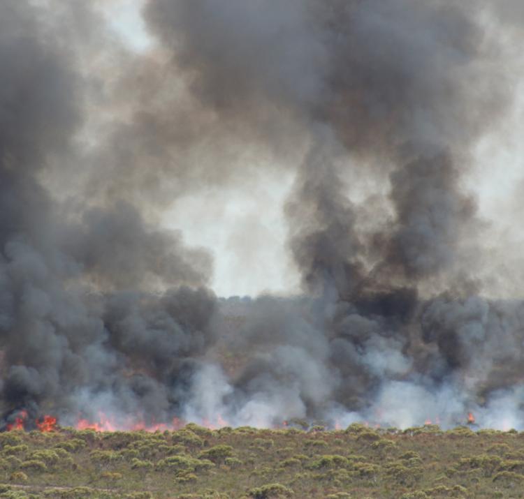 Ngarkat, Sth Australia, fire and smoke