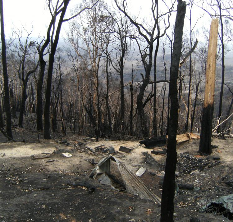 Aftermath of the 2009 Kinglake, Victoria fires. Photo: BNHCRC
