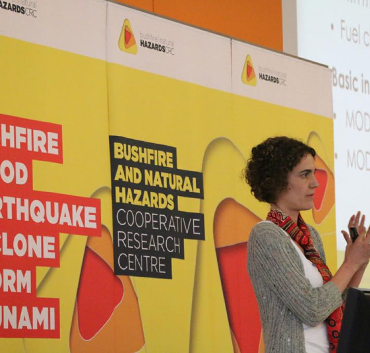 Dr Marta Yebra at the October 2017 Research Advisory Forum.