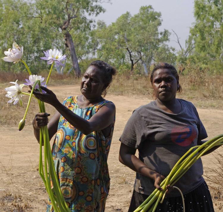 Indigenous communities use local knowledge to reduce the risk of disasters