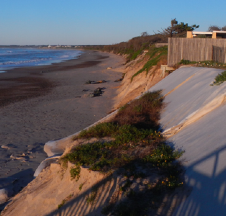 The actively eroding dune face at Old Bar, as seen in June 2015. Photo: Geoscience Australia