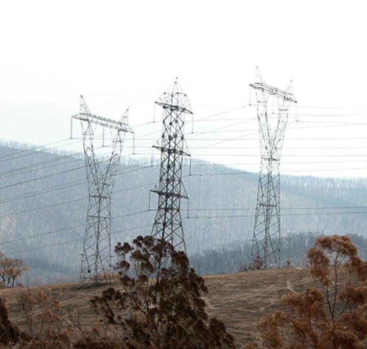 Powerlines impacted by Black Saturday, Strathewen. Photo: David Bruce, Bushfire and Natural Hazards CRC