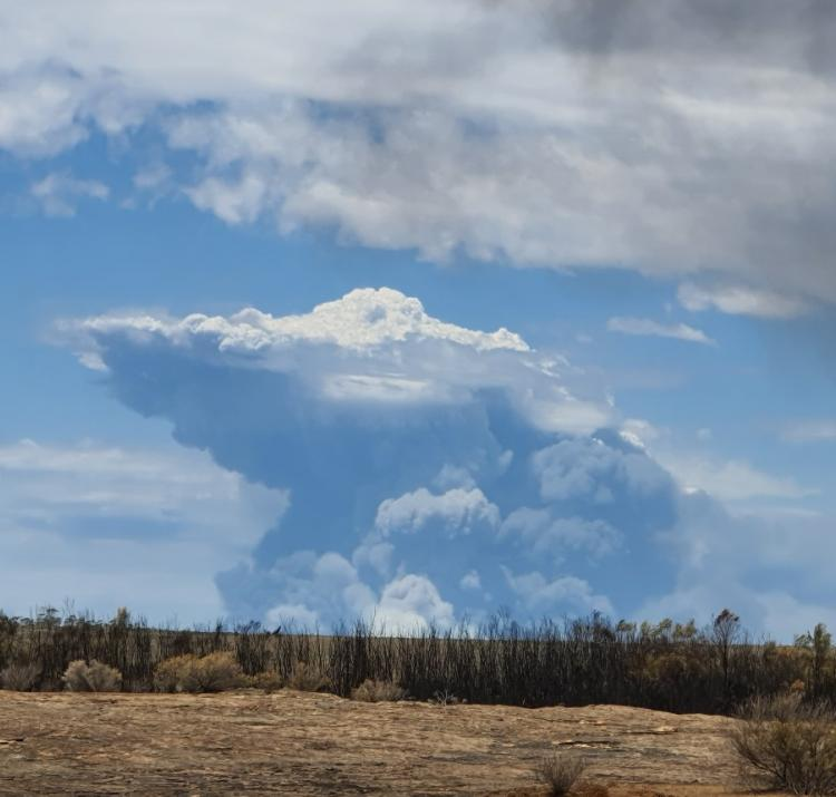 Fire-generated thunderstorm forming during Lake King fire in Western Australia, 2020. Photo: Christine Harper, DBCA, WA.