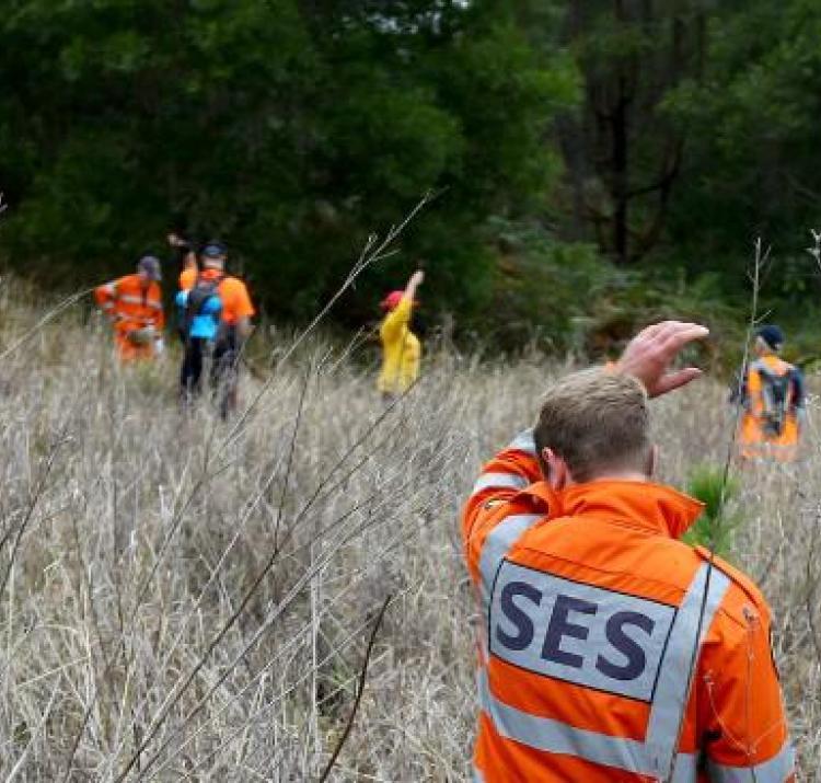 SES volunteers undertaking a search.