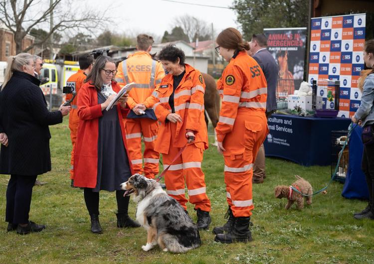 2020 Get Ready Animals launch. Photo: Warren Turner, NSW SES Flickr