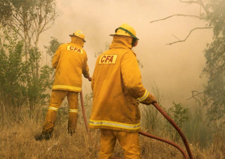 CFA personnel at the fire ground. Photo credit: CFA.