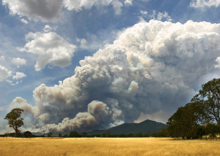 Pyroconvective smoke plume. Photo credit: Country Fire Authority.
