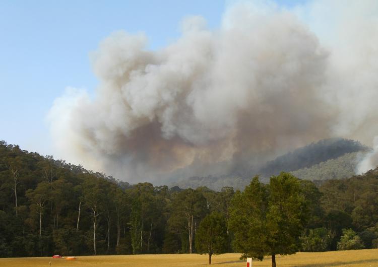 Smoke plume from bushfire. Photo credit: DSE.