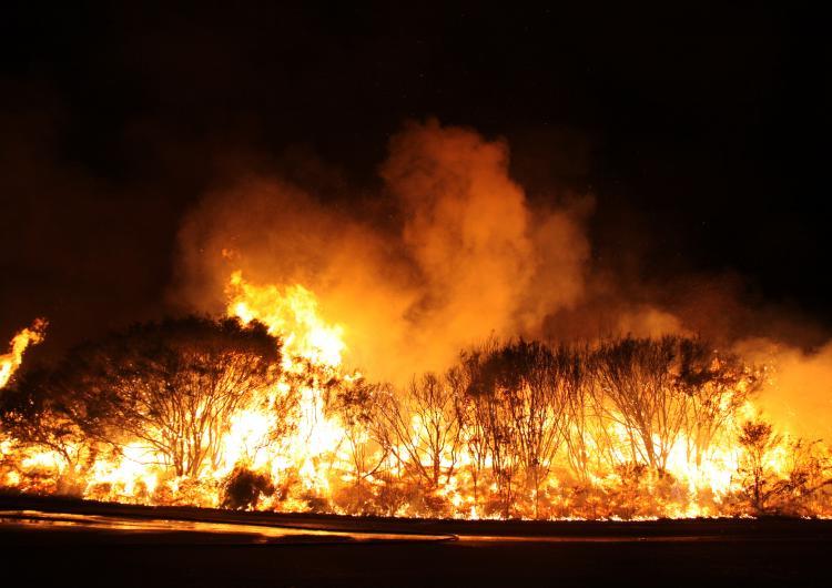 Fire in the Blue Mountains. Photo: Ben Shephard, NSW RFS.