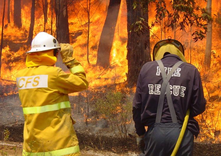 Controlled fire in South Australia. Photo: SA Metropolitan Fire Service