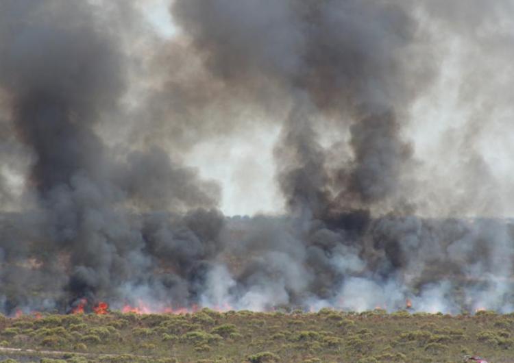 Ngarkat, South Australia. Fire and Smoke.