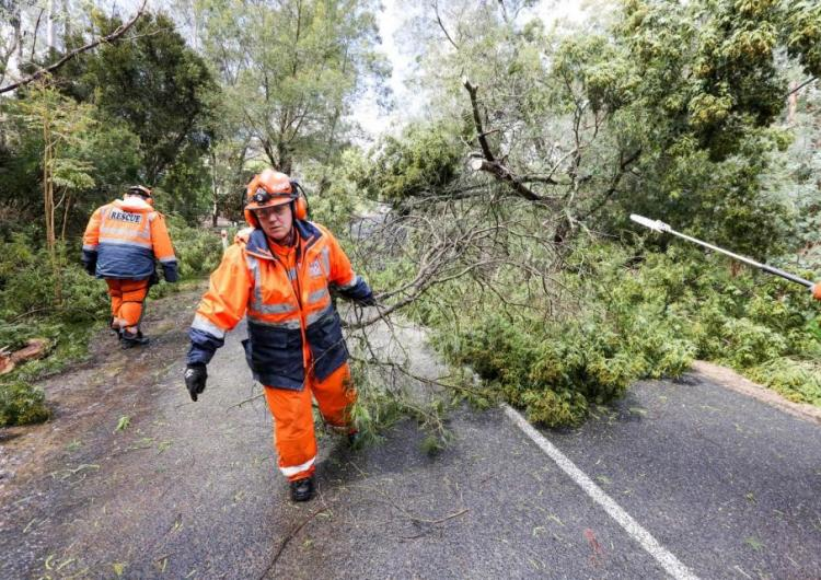 : SA SES volunteers clearing up after a storm. Photo: SA State Emergency Service