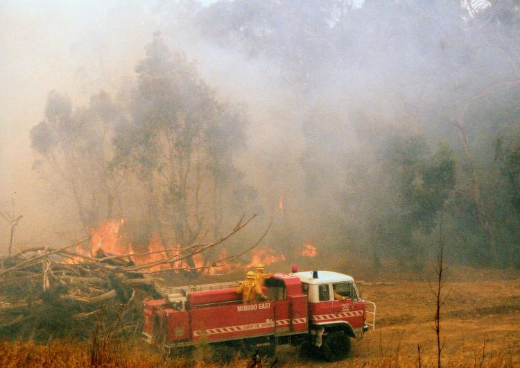 A fire out Mirboo North. Photo: CFA.