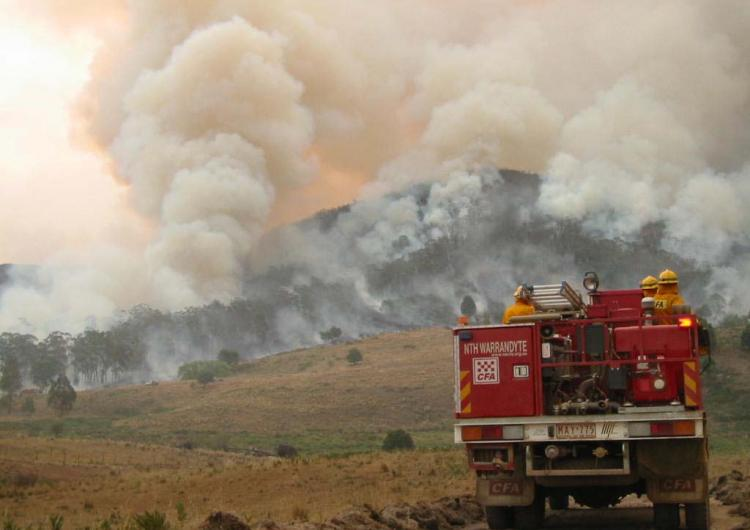 Research being undertaken forDELWP will provide critical insights to the sector. Photo: Country Fire Authority.