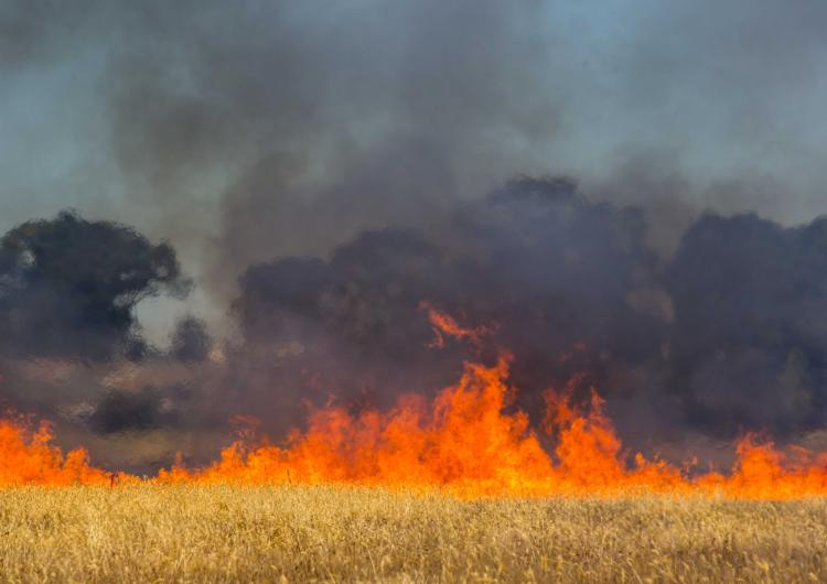 Fire spread. Photo: CFA Communities and Communication