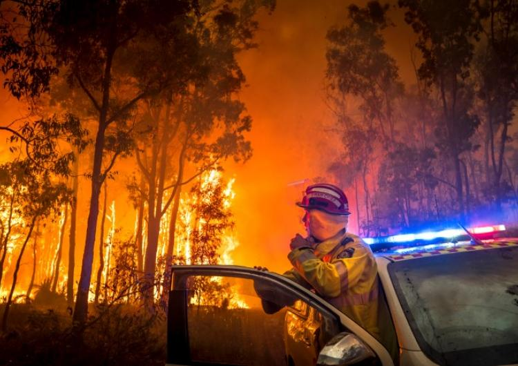 A Handbook of Wildfire Engineering by Greg Penney. Photo: Evan Collis, Fire and Emergency Services