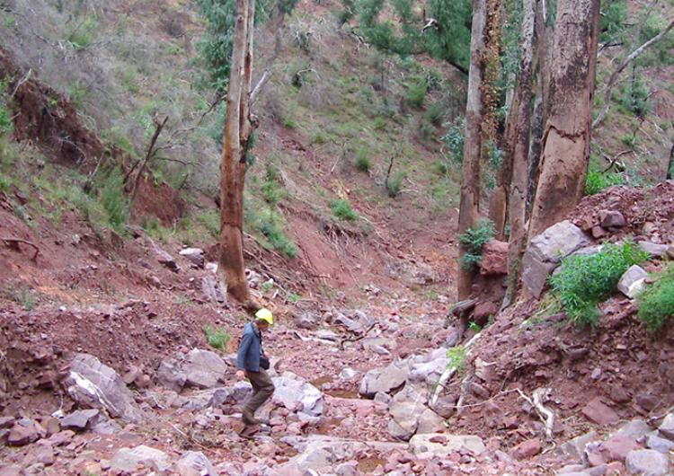 A very large debris flow near Licola (East Gippsland, Victoria) after 2007 bushfires.