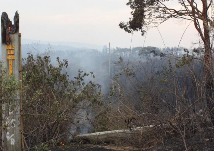 Ruttleys Road fire 2013. Photo: Ausgrid (CC BY 2.0)