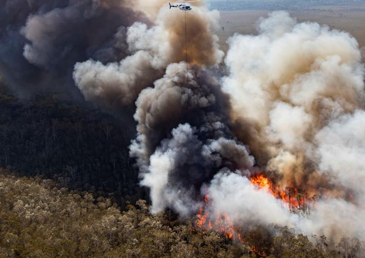 A helicopter drops water on the Peregian Springs fire on Queensland's Sunshine Coast in September 2019.
