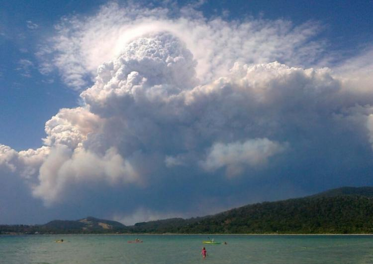 The CRC has developed a Black Summer-response research program. Photo: NSW Rural Fire Service, January 2020.