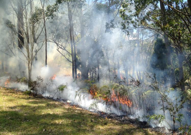 Measuring the intangible benefits of prescribed burning is assisting agencies to better measure the impacts on ecosystems and peoples lives. Photo: Veronique Florec.