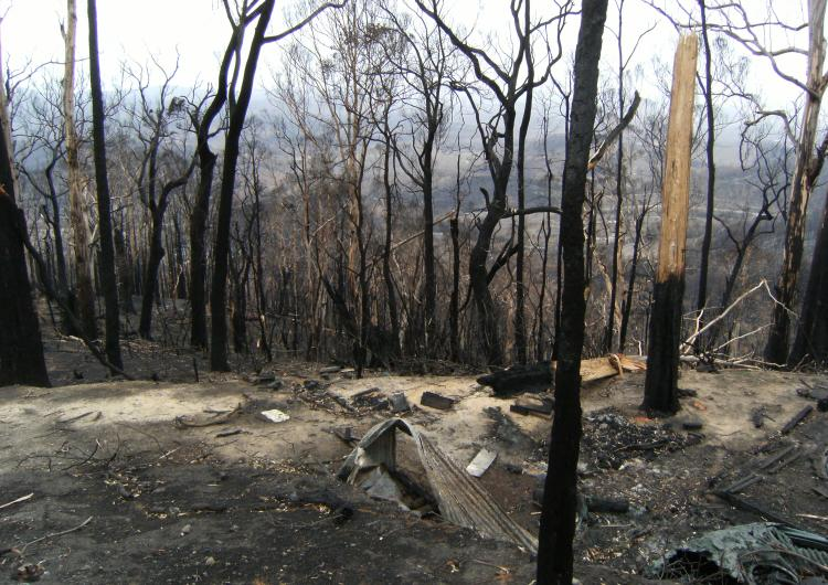 2009 Victoria Fires Kinglake. Photo: BNHCRC