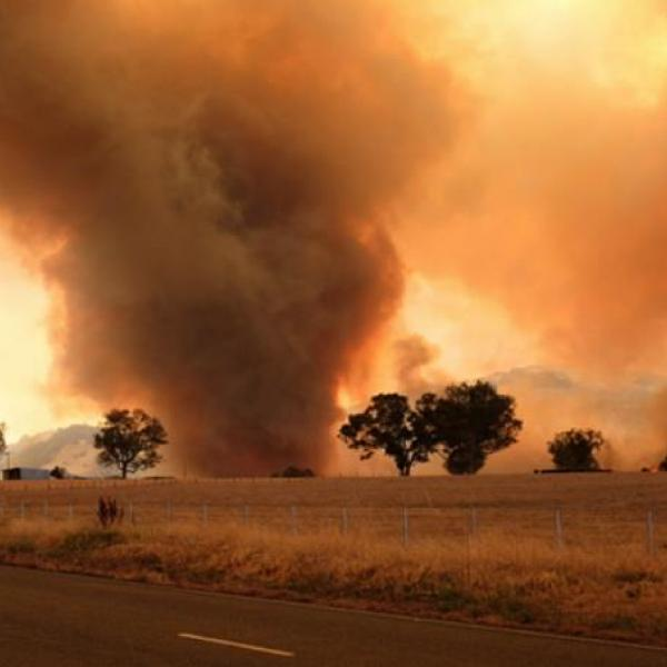 Fire generated vortex near Karumba (Victoria, Corryong fire) at 7.30pm 30 December 2019. Photo courtesy Ms Janice Newnham.