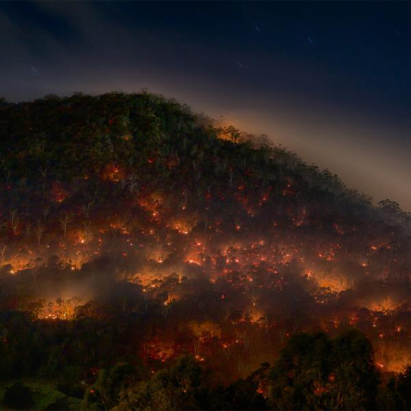 Hobart prescribed burn, May 2013. Photo: Mike Rowe (CC BY-NC 2.0)