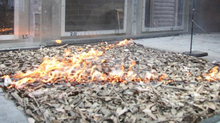 Experimental separated v-shaped fire conducted in the CSIRO Pyrotron. Photo: Andrew Sullivan, CSIRO