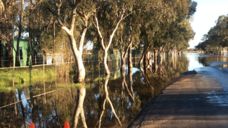 This research investigated the influence of road characteristics on a motorist's decision to enter floodwater, and the effect this has on fatalities. Photo: NSW State Emergency Service.
