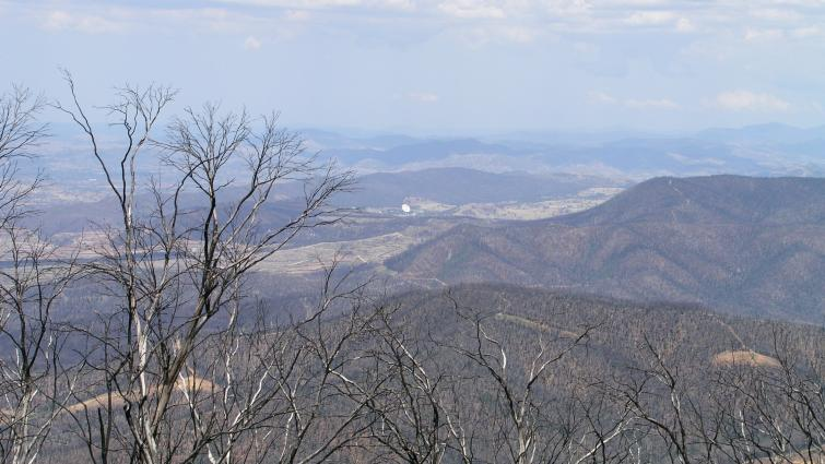 Canberra 2003 fire aftermath. Photo: Mick Stanic (CC-BY NC 2.0)