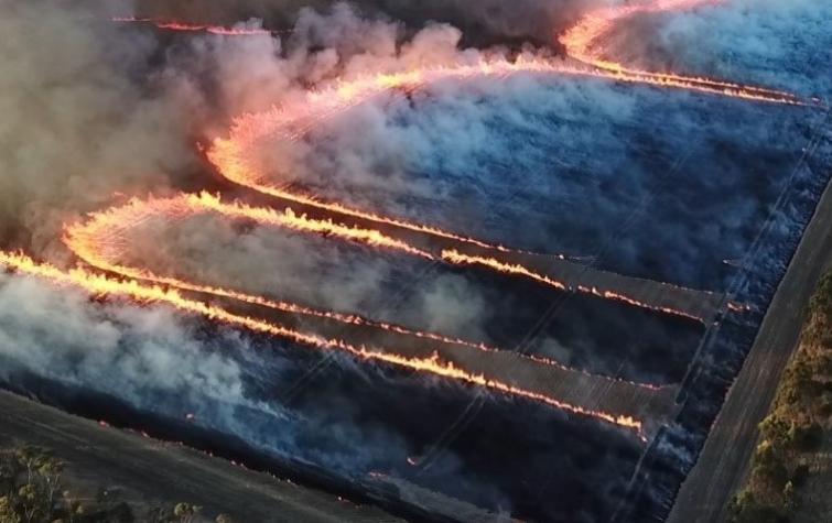 A controlled burn. Photo: Brett Cirulis.