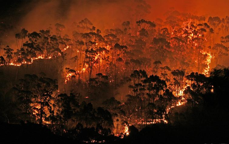 Bushfire near Hobart 2006.