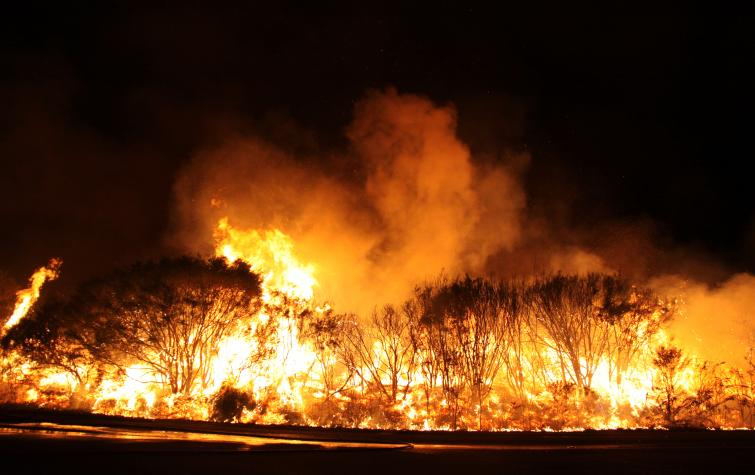 Fire in the Blue Mountains. Photo: Ben Shephard, NSW RFS.