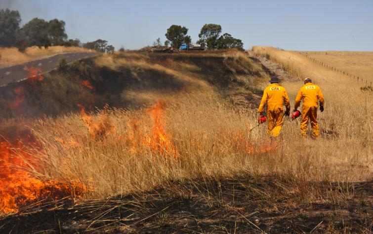 Hazard reduction burn in Victoria by CFA. Photo credit: Sarah Dickson-Hoyle.