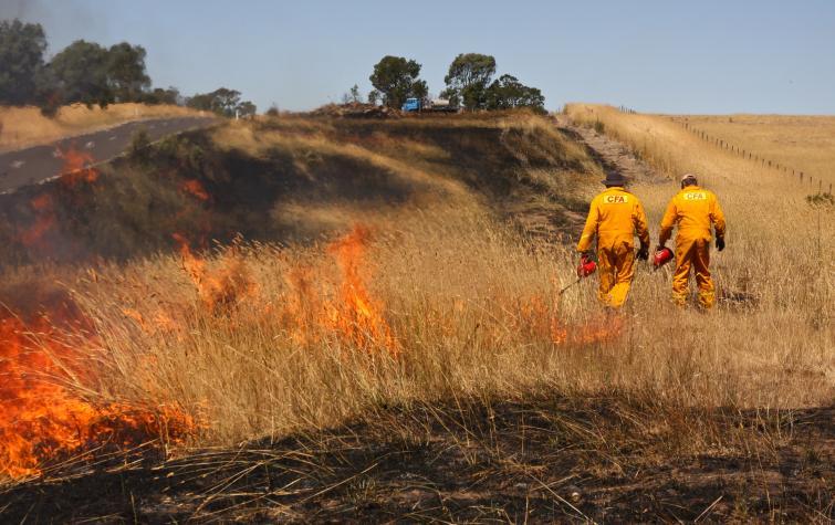 Hazard reduction burn in Victoria by CFA. Photo credit: Sarah Dickson-Hoyle.