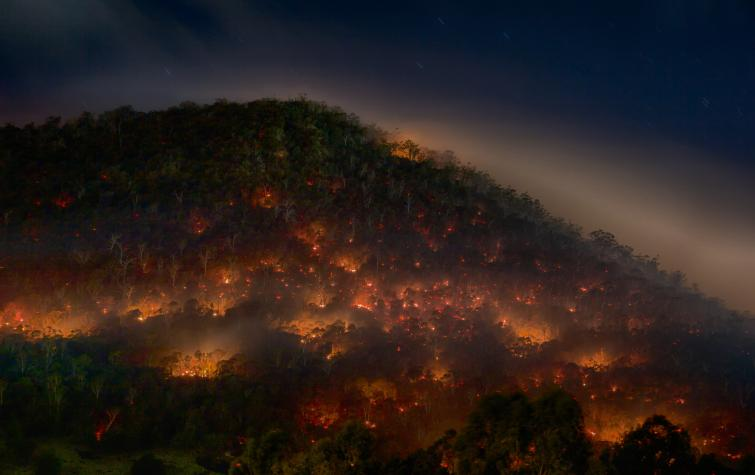 This research is testing new technology to help detect bushfires before they become too big to control. Photo: Mike Rowe (CC- BY-NC-2.0).