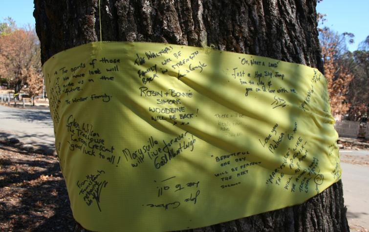 Messages from the Marysville community after the 2009 bushfires. Photo: David Bruce