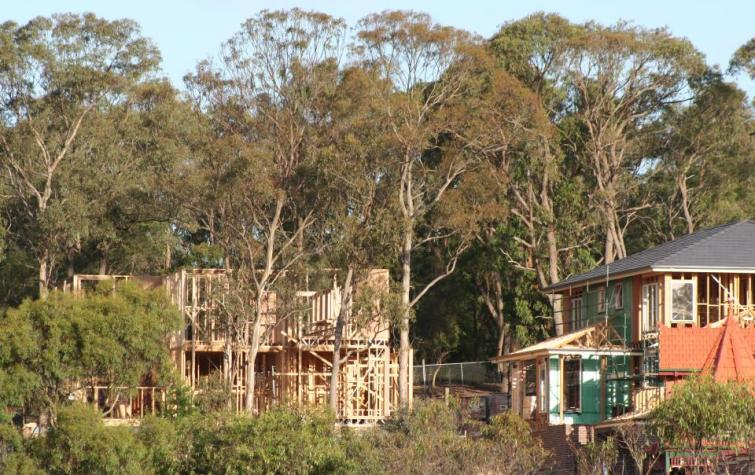 Development in urban fringe areas highlights the vital role urban planning can play in improving the survival of dwellings in bushfire events.