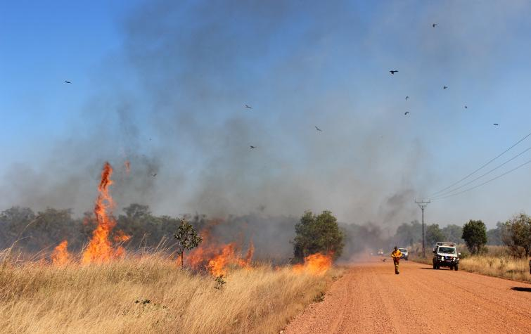 A grassland fire along Kentish Rd in the Northern Territory. Photo: Tina Holt