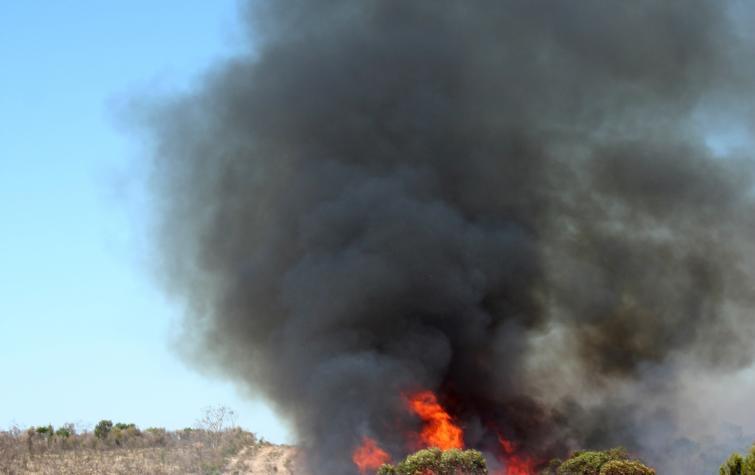 Fire at Ngarkat
