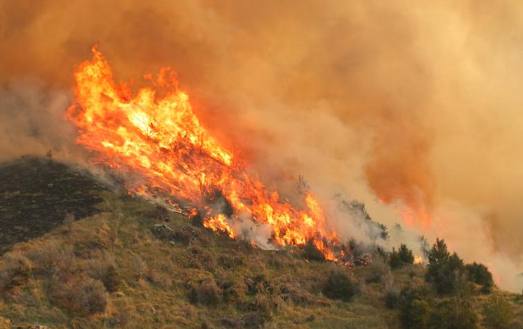 Fire spread along the mountain side. Photo credit: Fire and emergecny New Zealand.