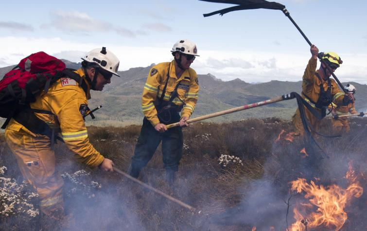 Firefighters using fire beaters to fight the Gell River fire in the Tasmanian Wilderness World Heritage Area. Photo: Warren Frey, AFAC