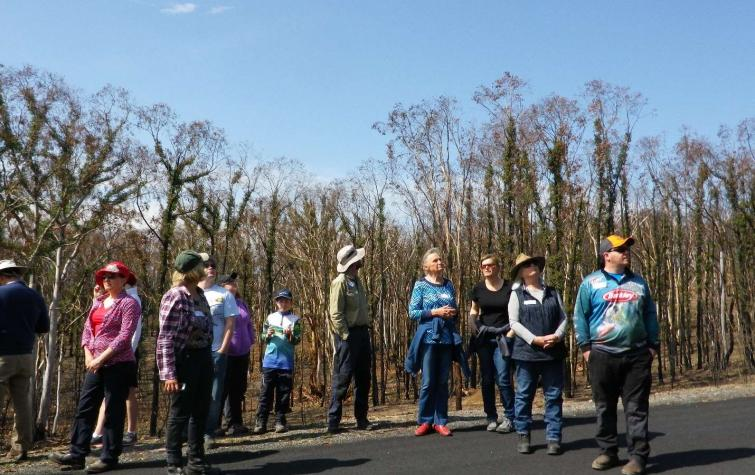 Hotspots workshop participants stand amongst burnt-out trees and learn how the landscape affected the behaviour of the Carwoola-Taliesin bush fire. Photo: K. McShea, Hotspots Fire Project